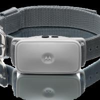 Motorola BARK 200U
